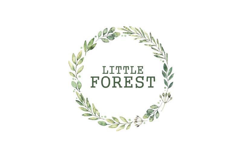 Little Forest Store