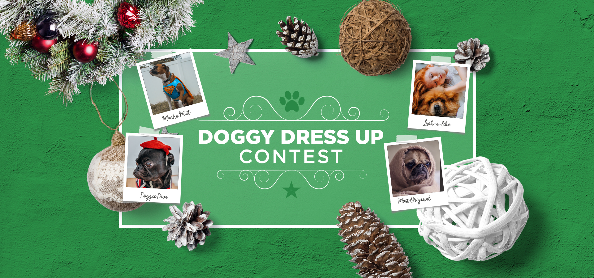 Maling-Road-Doggie-Contest-Banner-2019